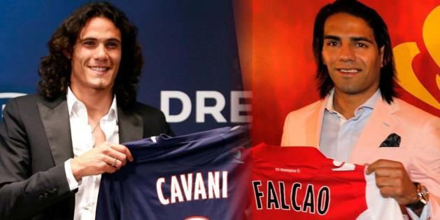cavanifalcao_original_crop_north
