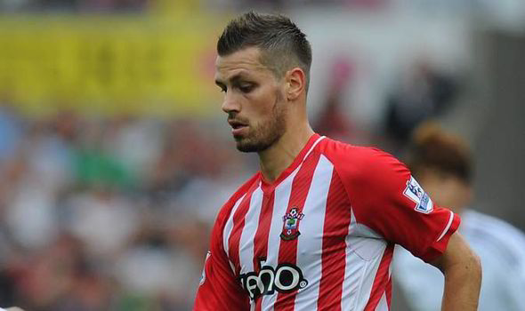 Morgan Schneiderlin is a Premier League proven defensive midfielder who could help solve Arsene's problems
