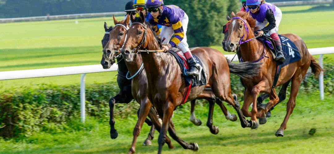 Andrew Mount's Horse Racing Tips – Wednesday October 13th