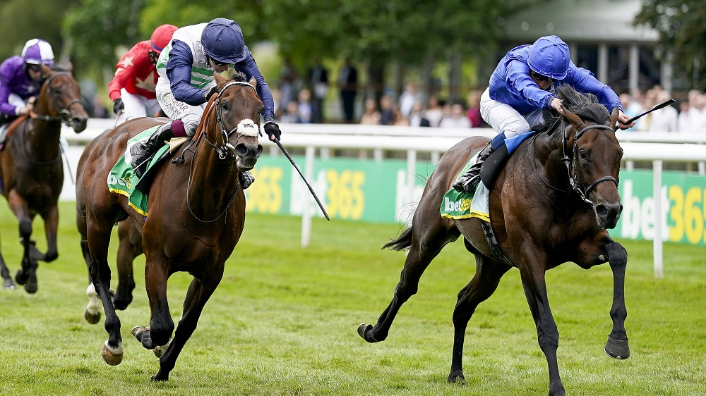 Cesarewitch Handicap 2021 preview and betting tips