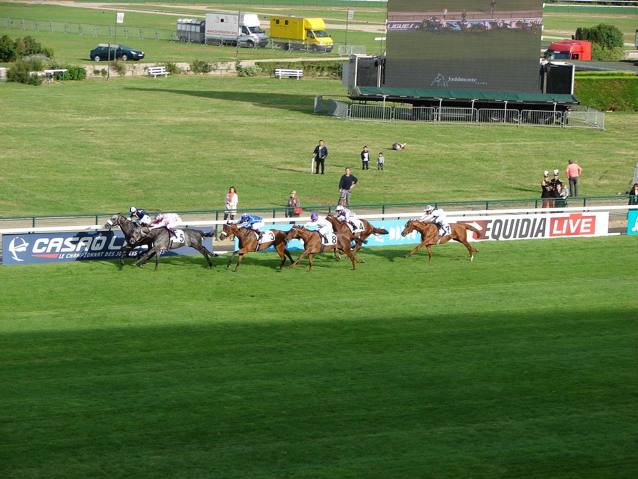 Arc betting tips 2 October from Longchamp including Prix Du Cadran
