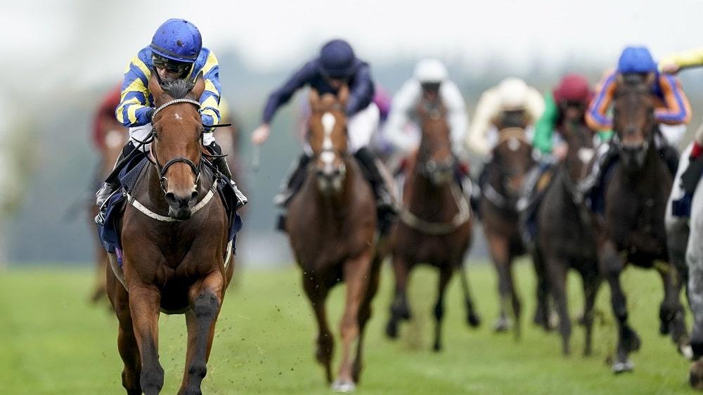 QIPCO British Champions Day betting tips